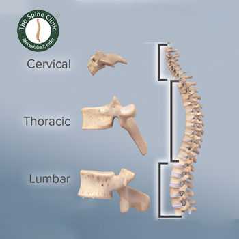 The Spine Clinic Ahmedabad